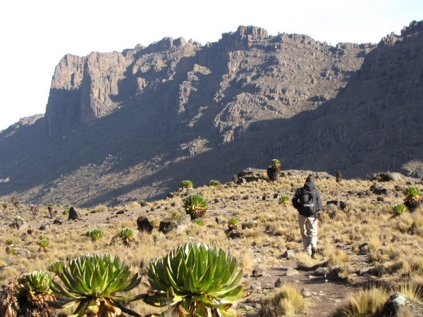 Mt.-Kenya-National-Park-at-a-Trekking-trail