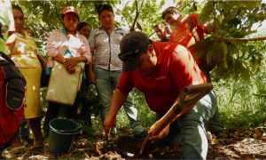 Agricoltura Ecuador